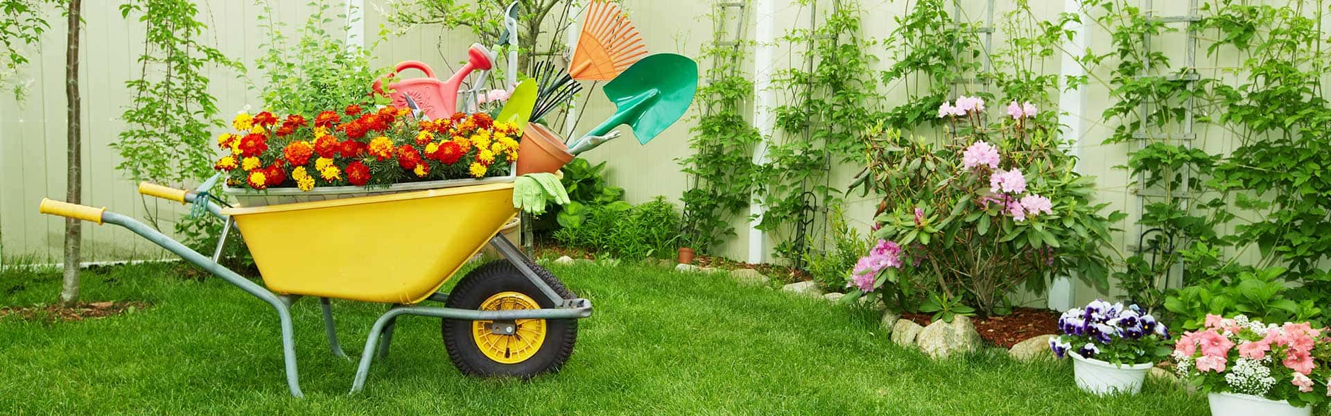 We'll manage your garden so that you have more free time!