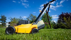 sw7 lawn services south kensington